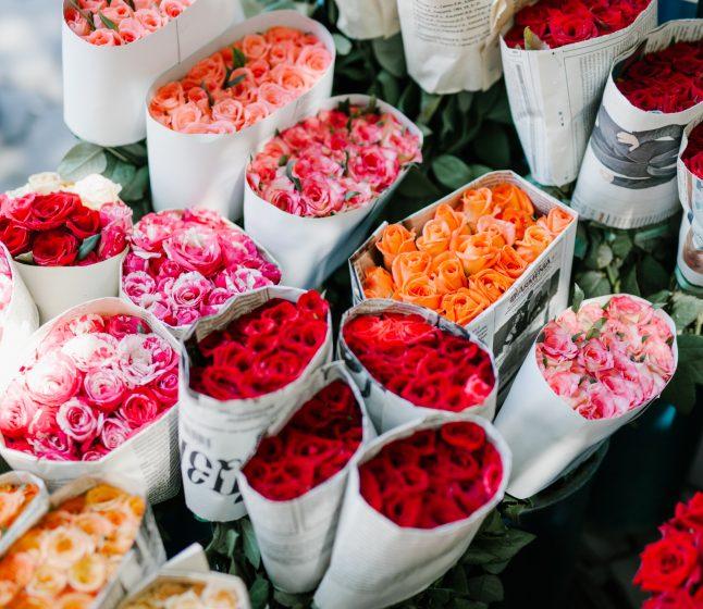 Co oznaczają kolory kwiatów?